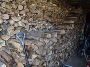 Stacking firewood... the poor man's exercise machine.